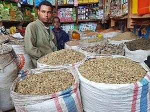 ethiopia green coffee